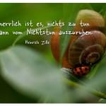 Schnecke und Marienkäfer mit dem Zitat: Wie herrlich ist es, nichts zu tun und dann vom Nichtstun auszuruhen. Heinrich Zille