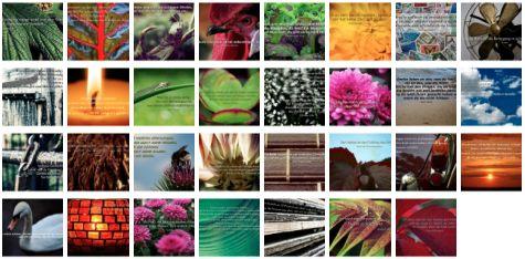 Übersichtsbild. Bilder Galerie mit Weisheiten, Zitaten und Sprüchen Oktober 2014