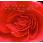 Blüte mit dem Zitat: Du kannst jemanden verändern, wenn du ihn akzeptierst. Laotse