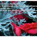 Pflanzen mit dem Zitat: Ich bin nicht in dieser Welt um den Erwartungen der Leute zu entsprechen, noch glaube ich, dass die Welt den meinen entsprechen muss. Fritz Perls