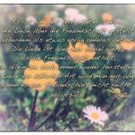 Blumenwiese mit dem Bertolt Brecht Zitat: Es ist ein weit verbreiteter Unfug, dass die Liebe über die Freundschaft gestellt wird und außerdem als etwas völlig anderes betrachtet. Die Liebe ist aber nur soviel wert, als sie Freundschaft enthält, aus der allein sie sich immer wieder herstellen kann. Mit der Liebe der üblichen Art wird man nur abgespeist, wenn es zur Freundschaft nicht reicht. Bertolt Brecht