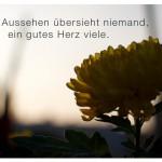 Blume mit dem Spruch: Gutes Aussehen übersieht niemand, ein gutes Herz viele.