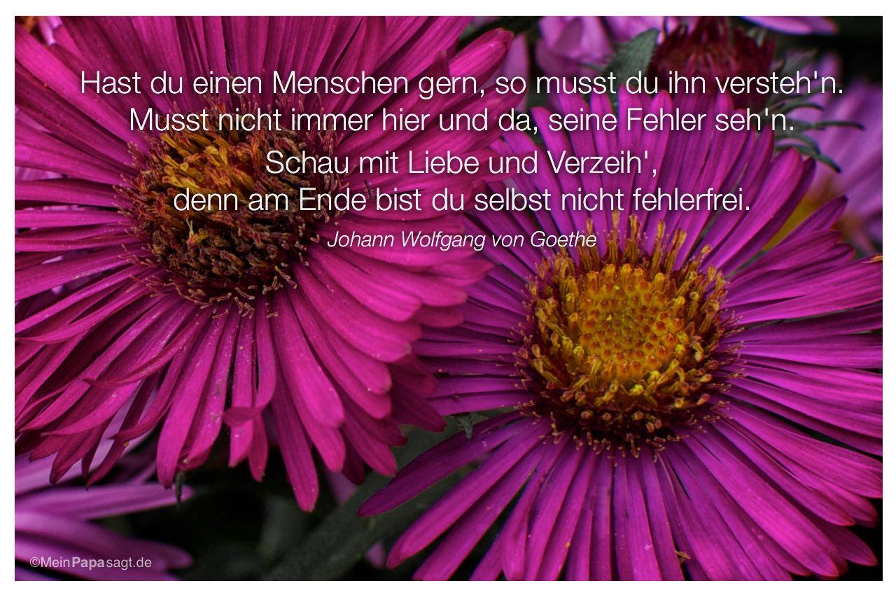 Hast du einen menschen gern so musst du ihn versteh 39 n - Goethe weihnachten zitate ...