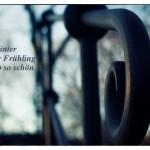 Treppengeländer mit dem Walter Ludin Zitat: Ohne Winter wäre der Frühling nur halb so schön. Walter Ludin