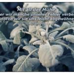 Pflanze mit dem Michelangelo Zitat: Mit all der Mühe, mit der wir manche unserer Fehler verbergen, könnten wir sie uns leicht abgewöhnen. Michelangelo