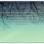Blick in den Himmel mit dem Arthur Schopenhauer Zitat: Ganz er selbst sein darf jeder nur, solange er allein ist. Wer also nicht die Einsamkeit liebt, der liebt auch nicht die Freiheit; denn nur wenn man allein ist, ist man frei! Arthur Schopenhauer