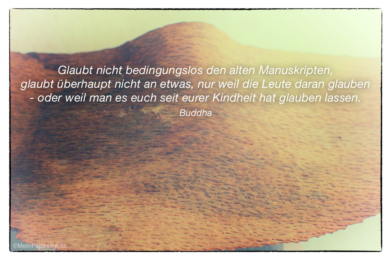 Holzscheit mit dem Buddha Zitat: Glaubt nicht bedingungslos den alten Manuskripten, glaubt überhaupt nicht an etwas, nur weil die Leute daran glauben - oder weil man es euch seit eurer Kindheit hat glauben lassen. Buddha