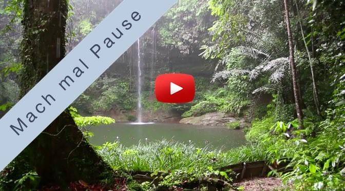 Mach mal Pause <br>im Regenwald