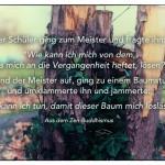 """Baumstumpf mit dem Zen-Buddhistischen Zitat: Der Schüler ging zum Meister und fragte ihn: """"Wie kann ich mich von dem, was mich an die Vergangenheit heftet, lösen?"""" Da stand der Meister auf, ging zu einem Baumstumpf und umklammerte ihn und jammerte: """"Was kann ich tun, damit dieser Baum mich loslässt?"""" Aus dem Zen-Buddhismus"""
