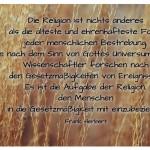 Gräser mit dem Frank Herbert Zitat: Die Religion ist nichts anderes als die älteste und ehrenhafteste Form jeder menschlichen Bestrebung, die nach dem Sinn von Gottes Universum fragt. Wissenschaftler forschen nach den Gesetzmäßigkeiten von Ereignissen. Es ist die Aufgabe der Religion, den Menschen in die Gesetzmäßigkeit mit einzubeziehen. Frank Herbert