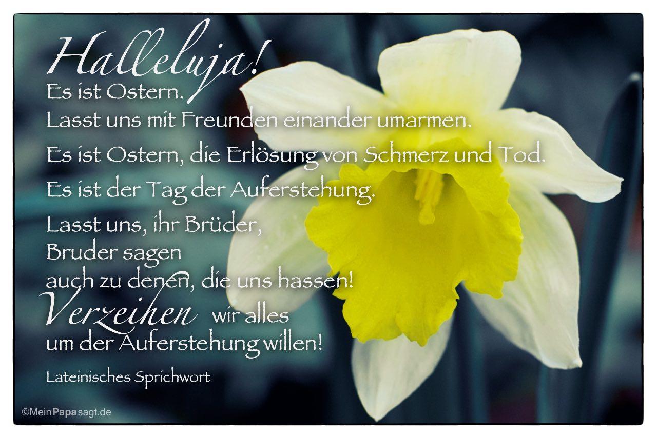 Goethe Zitate Ostern | Leben Zitate