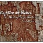 Baumstamm mit dem Franz Carl Endres Zitat: Der Kluge lässt sich belehren, der Unkluge weiß alles besser. Franz Carl Endres
