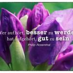 Oleander mit dem Philip Rosenthal Zitat: Wer aufhört, besser zu werden, hat aufgehört, gut zu sein! Philip Rosenthal