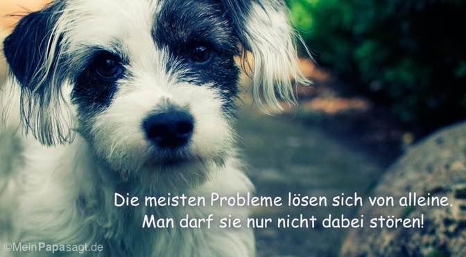 Die meisten Probleme lösen sich von alleine…