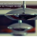 Lampen mit dem Marie von Ebner-Eschenbach Zitat: Du kannst so rasch sinken, dass du zu fliegen meinst. Marie von Ebner-Eschenbach