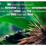 Tanne & Grün mit dem Anselm Grün Zitat: Wir sind ein Stück weit auch für das Verhalten des anderen verantwortlich. Wir können in ihm Leben oder Tod hervorlocken, das Gute oder das Böse. Anselm Grün