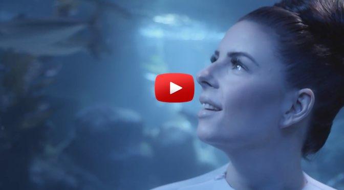 Musik zum Wochenende – Balbina – Goldfisch