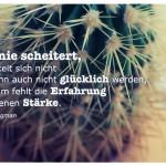 Kaktus mit dem Martin Seligman Zitat: Wer nie scheitert, entwickelt sich nicht und kann auch nicht glücklich werden, denn ihm fehlt die Erfahrung der eigenen Stärke. Martin Seligman