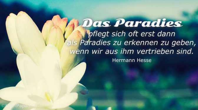 Das Paradies …