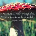 Eine gesunde Seele erträgt alles ...