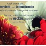 Blütenkelche mit dem Jochen Mariss Zitat: Auch wenn uns Zuversicht und Lebensfreude manchmal so klein wie Zwerge vorkommen: Sie sind schlafende Riesen, die wir wecken können. Jochen Mariss