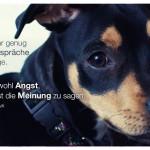Kleiner Hund mit dem Jean Giraudoux Zitat: Man führt nicht mehr genug Selbstgespräche heutzutage. Man hat wohl Angst, sich selbst die Meinung zu sagen. Jean Giraudoux