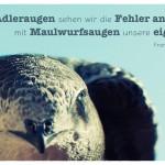 Mauersegler mit dem Franz von Sales Zitat: Mit Adleraugen sehen wir die Fehler anderer, mit Maulwurfsaugen unsere eigenen. Franz von Sales