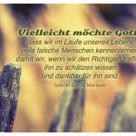 Zaun mit dem Gabriel Garcia Marquez Zitat: Vielleicht möchte Gott, dass wir im Laufe unseres Lebens viele falsche Menschen kennenlernen, damit wir, wenn wir den Richtigen treffen, ihn zu schätzen wissen und dankbar für ihn sind. Gabriel Garcia Marquez