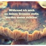 Pilz mit dem Kurt Tepperwein Zitat: Während ich mich an deinen Grenzen stoße, werden meine sichtbar. Kurt Tepperwein