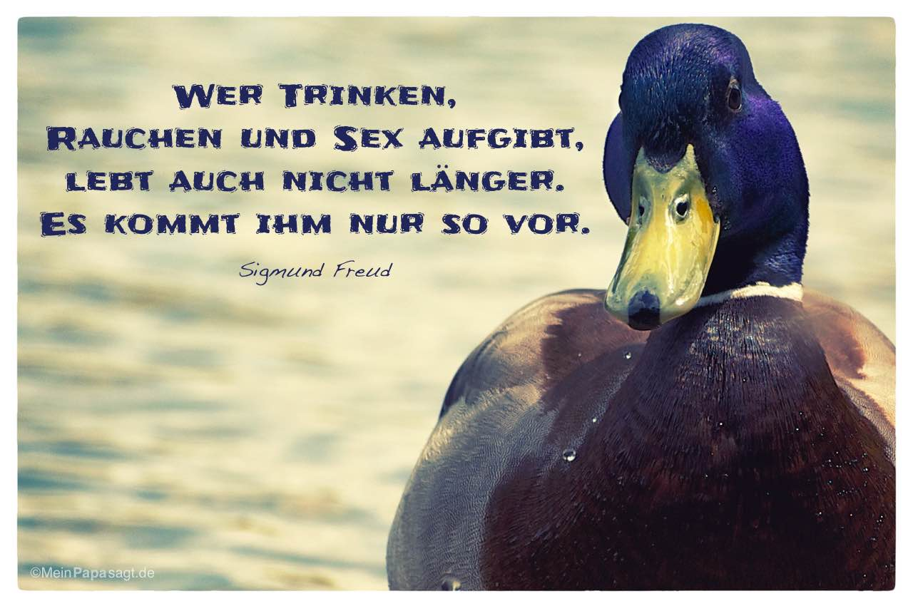 Ente mit dem Sigmund Freud Zitat: Wer Trinken, Rauchen und Sex aufgibt, lebt auch nicht länger. Es kommt ihm nur so vor. Sigmund Freud
