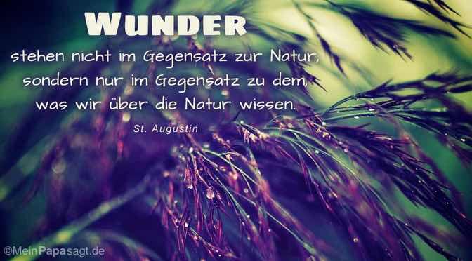 Wunder stehen nicht im Gegensatz zur Natur…