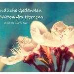 Mandelblüte mit dem Ingeborg Maria Sick Zitat: Freundliche Gedanken sind Blüten des Herzens. Ingeborg Maria Sick