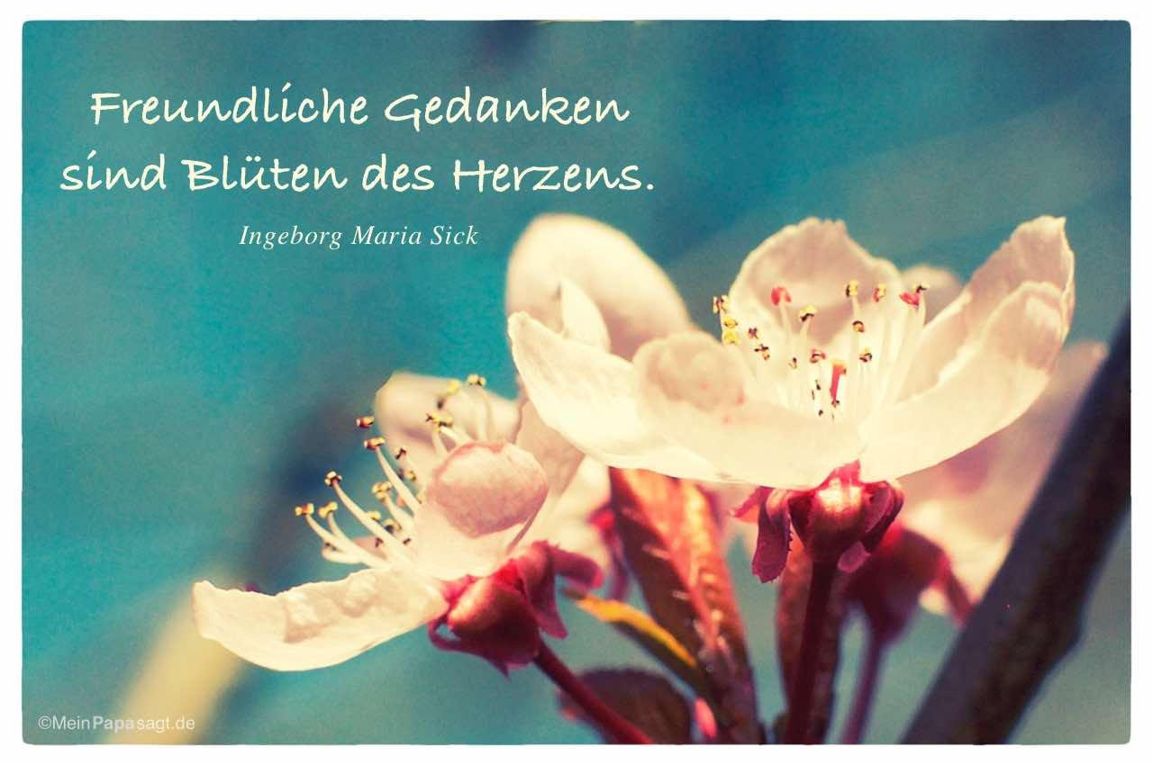Mein Papa sagt: Freundliche Gedanken sind Blüten des Herzens...