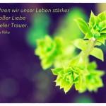 Knospe mit dem Rainer Maria Rilke Zitat: Nie erfahren wir unser Leben stärker als in großer Liebe und in tiefer Trauer. Rainer Maria Rilke