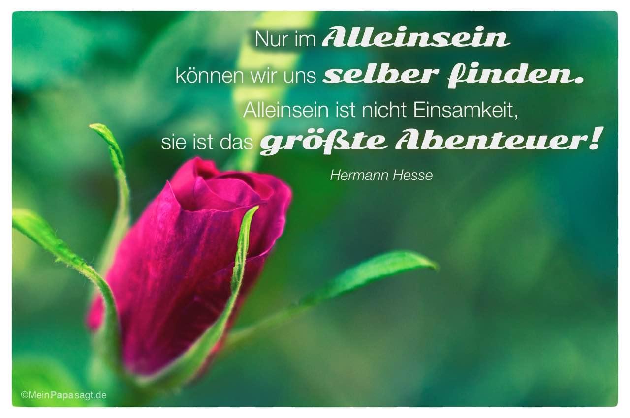 Zitat einsamkeit. Goethe Zitate Einsamkeit. 2019 01 21
