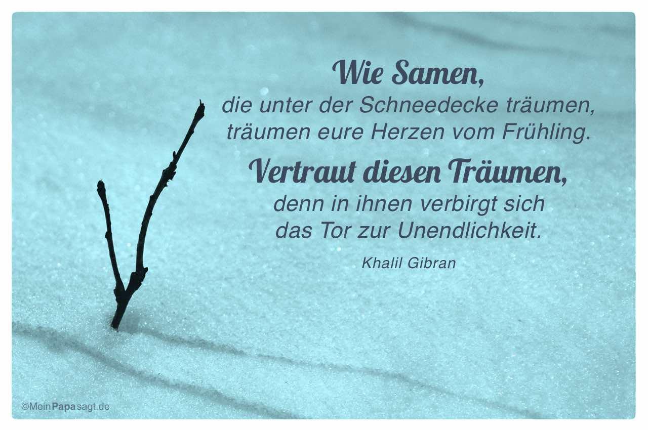 Trieb durchbricht Schneedecke mit dem Khalil Gibran Zitat: Wie Samen, die unter der Schneedecke träumen, träumen eure Herzen vom Frühling. Vertraut diesen Träumen, denn in ihnen verbirgt sich das Tor zur Unendlichkeit. Khalil Gibran