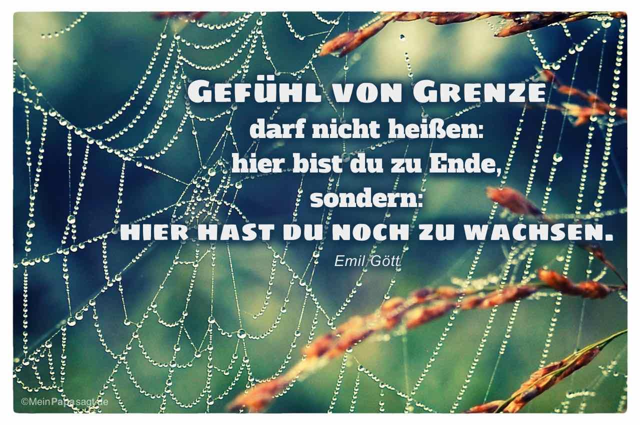 Spinnennetz mit dem Emil Gött Zitat: Gefühl von Grenze darf nicht heißen: hier bist du zu Ende, sondern: hier hast du noch zu wachsen. Emil Gött