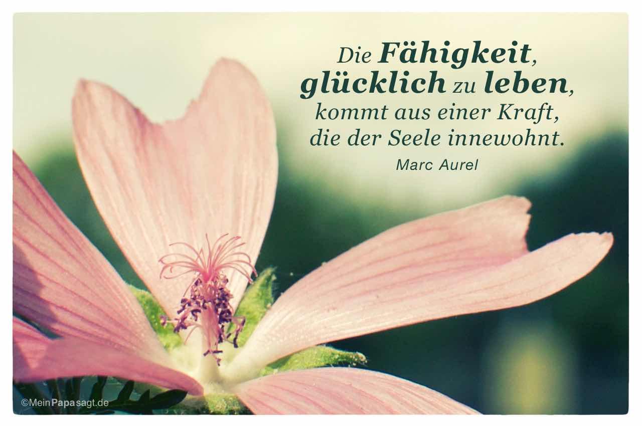 Blüte mit dem Marc Aurel Zitat: Die Fähigkeit, glücklich zu leben, kommt aus einer Kraft, die der Seele innewohnt. Marc Aurel