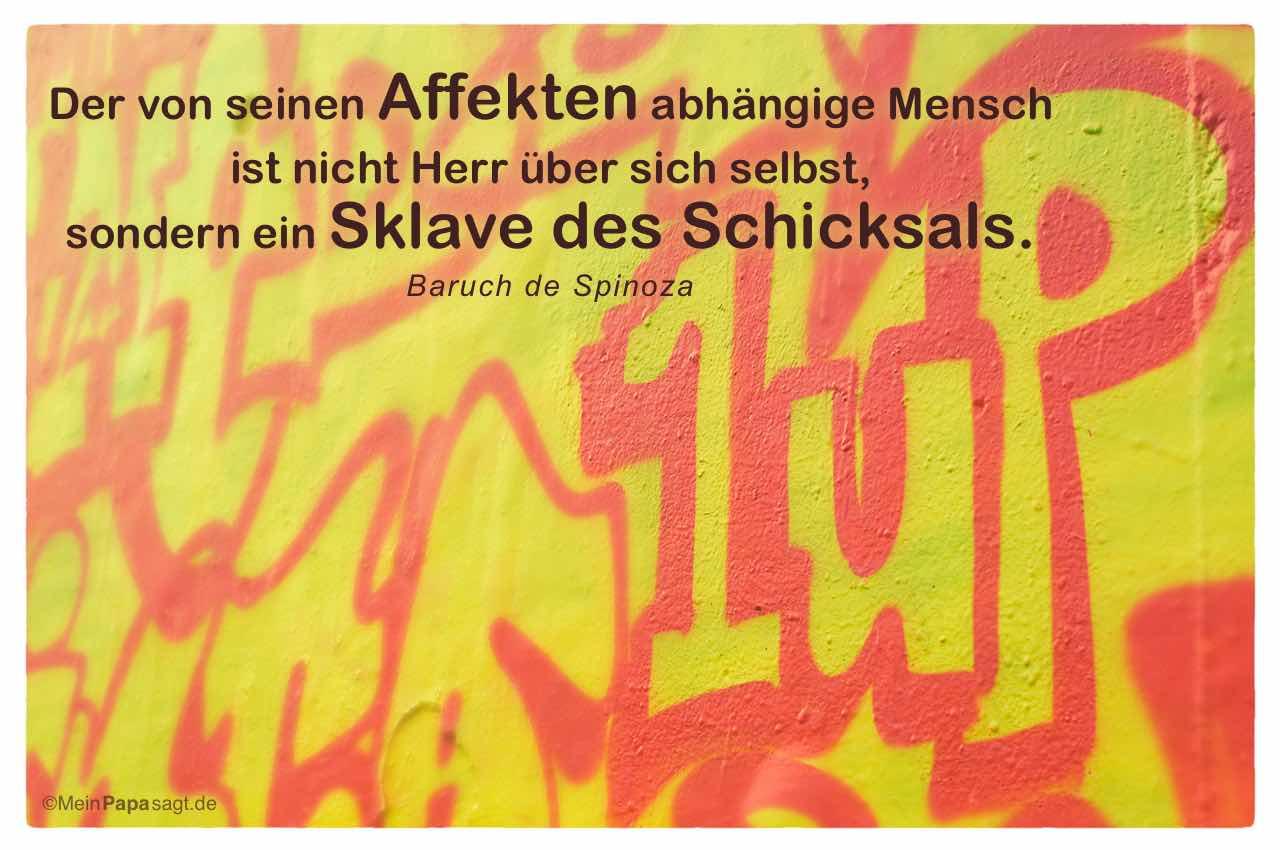 Spinoza Zitate