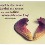 Ahorn-Frucht mit dem Kierkegaard Zitat: Reinheit des Herzens ist, in Wahrheit eines zu wollen, und zwar das Gute, das seinen Lohn in sich selber trägt. Søren Kierkegaard