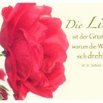 Rote Rosen mit dem W. S. Gilbert Zitat: Die Liebe ist der Grund, warum die Welt sich dreht. W. S. Gilbert