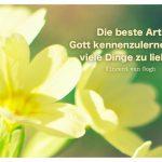 Blütenkelche mit dem van Gogh Zitat: Die beste Art, Gott kennenzulernen, ist, viele Dinge zu lieben. Vincent van Gogh