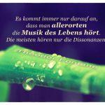 Palmenblatt mit Wassertropfen und dem Fontane Zitat: Es kommt immer nur darauf an, dass man allerorten die Musik des Lebens hört. Die meisten hören nur die Dissonanzen. Theodor Fontane