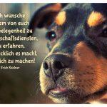 Junger Hund mit dem Kästner Zitat: Ich wünsche jedem von euch die Gelegenheit zu Freundschaftsdiensten, zu erfahren, wie glücklich es macht, glücklich zu machen! Erich Kästner