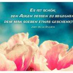 Blütenkelche mit dem La Bruyère Zitat: Es ist schön, den Augen dessen zu begegnen, dem man soeben etwas geschenkt hat. Jean de La Bruyère