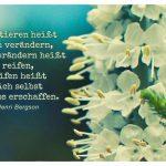 Blütenkelche mit dem Bergson Zitat: Existieren heißt sich verändern, sich verändern heißt reifen, reifen heißt sich selbst endlos erschaffen. Henri Bergson