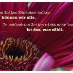 Rote Gerbera mit dem Spruch: In guten Zeiten Händchen halten können wir alle. In schlechten Zeiten nicht mehr loslassen, ist das, was zählt.