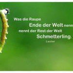 Raupe mit dem Laotse Zitat: Was die Raupe Ende der Welt nennt, nennt der Rest der Welt Schmetterling. Laotse