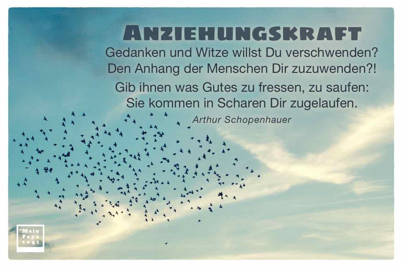 Vogelschar mit dem Schopenhauer Zitat: Anziehungskraft Gedanken und Witze willst Du verschwenden? Den Anhang der Menschen Dir zuzuwenden?! Gib ihnen was Gutes zu fressen, zu saufen: Sie kommen in Scharen Dir zugelaufen. Arthur Schopenhauer