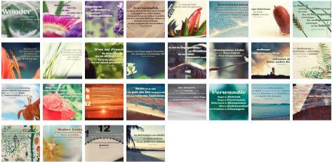 Übersichtsbild. Bilder Galerie mit Lebensweisheiten, Weisheiten, Zitate, Sprichwörter und Sprüche des Tages Februar 2017